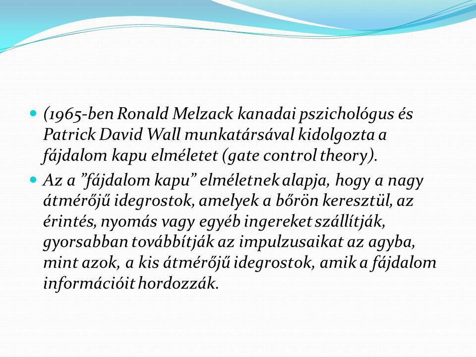"""(1965-ben Ronald Melzack kanadai pszichológus és Patrick David Wall munkatársával kidolgozta a fájdalom kapu elméletet (gate control theory). Az a """"fá"""