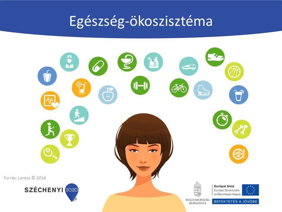 Egészség kokreáció - együttcselekvés Egészségélmény Egészségügyi teljesítmény Egészség- érték Intervenciótól a menedzselt tapasztalatig Forrás: Lantos 2012