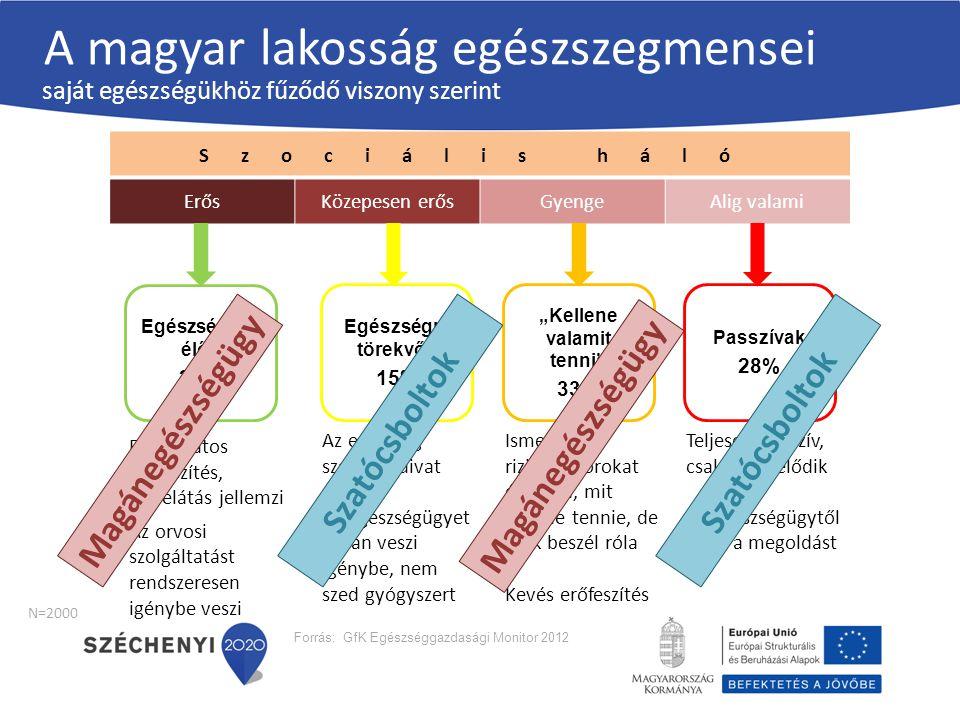 Szociális háló ErősKözepesen erősGyengeAlig valami Forrás: GfK Egészséggazdasági Monitor 2012 Egészségre törekvők 15% Egészségben élők 24% Passzívak 2
