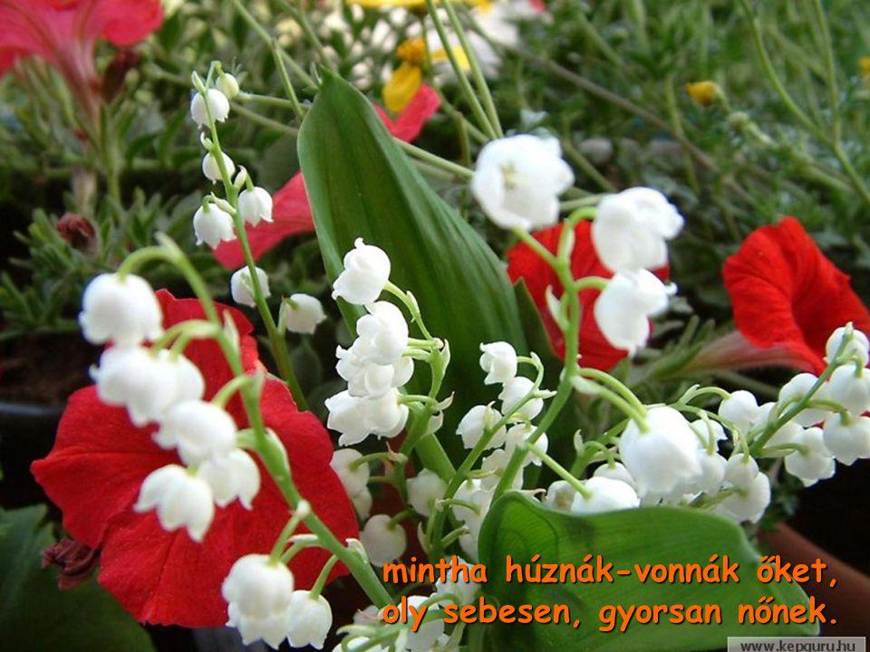 Ez a húsvét olyan ünnep, fák, virágok megzsendülnek Ez a húsvét olyan ünnep, fák, virágok megzsendülnek,