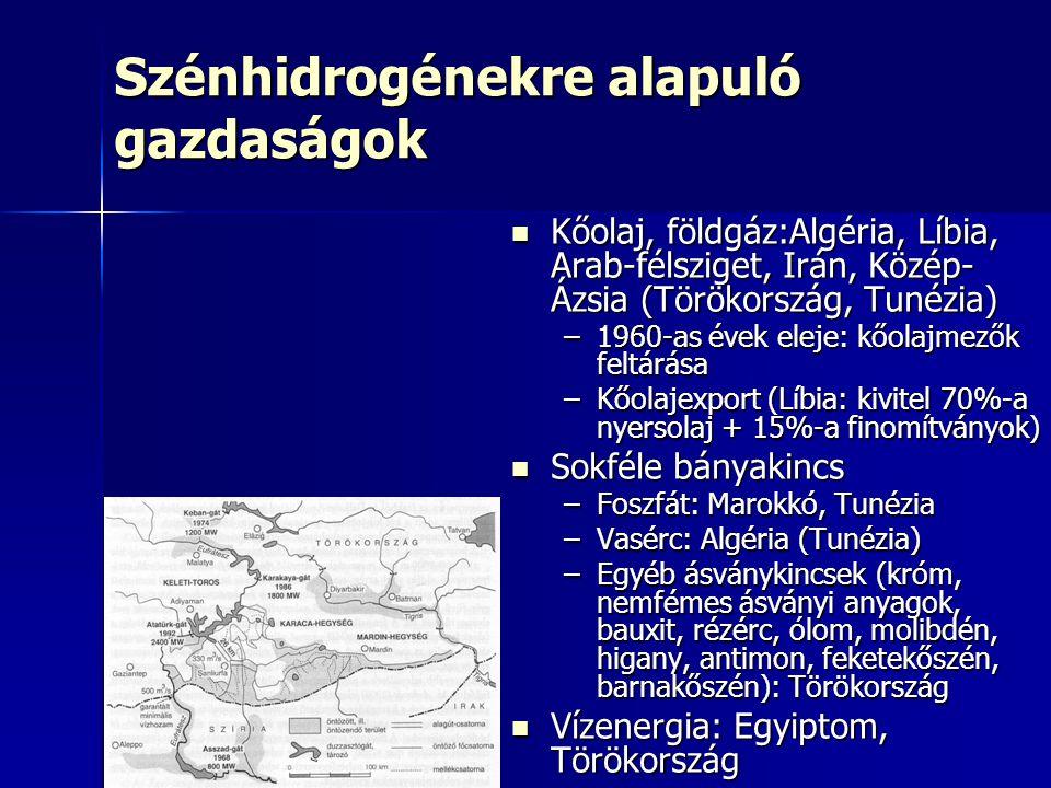 Szénhidrogénekre alapuló gazdaságok Kőolaj, földgáz:Algéria, Líbia, Arab-félsziget, Irán, Közép- Ázsia (Törökország, Tunézia) Kőolaj, földgáz:Algéria, Líbia, Arab-félsziget, Irán, Közép- Ázsia (Törökország, Tunézia) –1960-as évek eleje: kőolajmezők feltárása –Kőolajexport (Líbia: kivitel 70%-a nyersolaj + 15%-a finomítványok) Sokféle bányakincs Sokféle bányakincs –Foszfát: Marokkó, Tunézia –Vasérc: Algéria (Tunézia) –Egyéb ásványkincsek (króm, nemfémes ásványi anyagok, bauxit, rézérc, ólom, molibdén, higany, antimon, feketekőszén, barnakőszén): Törökország Vízenergia: Egyiptom, Törökország Vízenergia: Egyiptom, Törökország