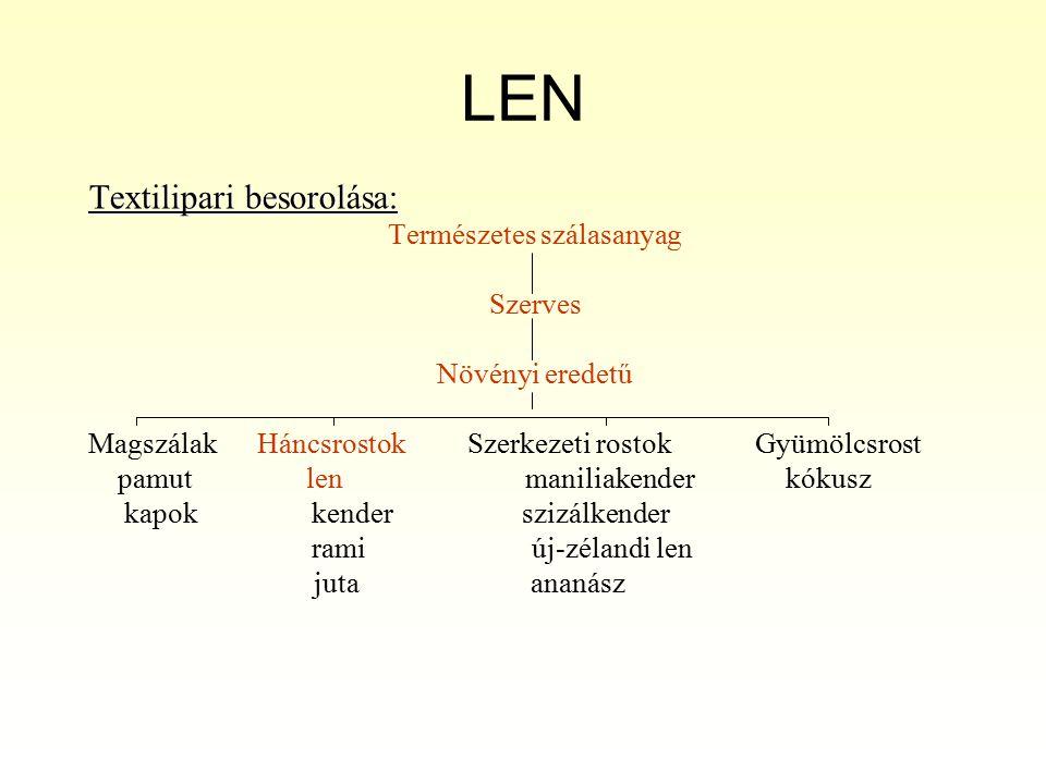 LEN 5.
