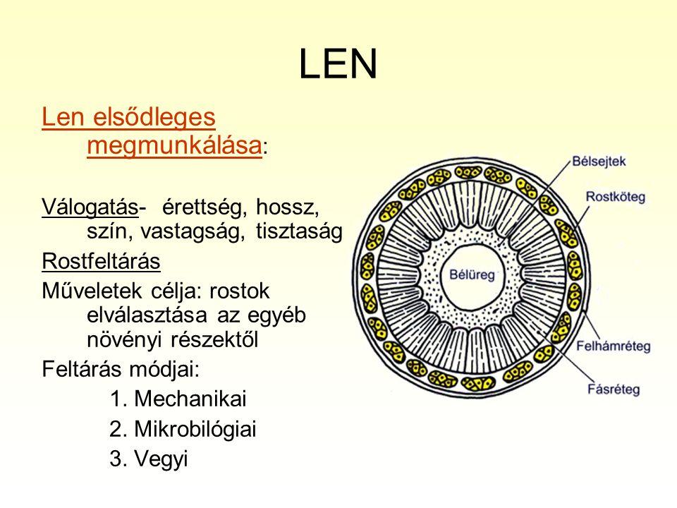 LEN Len elsődleges megmunkálása : Válogatás- érettség, hossz, szín, vastagság, tisztaság Rostfeltárás Műveletek célja: rostok elválasztása az egyéb nö