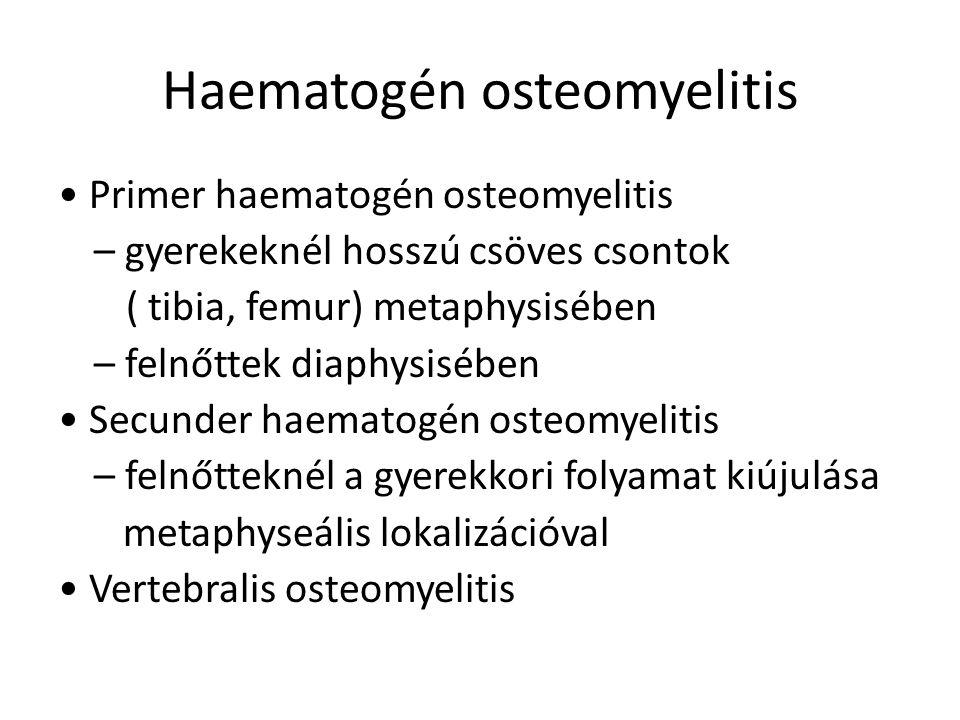 Haematogén osteomyelitis Primer haematogén osteomyelitis – gyerekeknél hosszú csöves csontok ( tibia, femur) metaphysisében – felnőttek diaphysisében