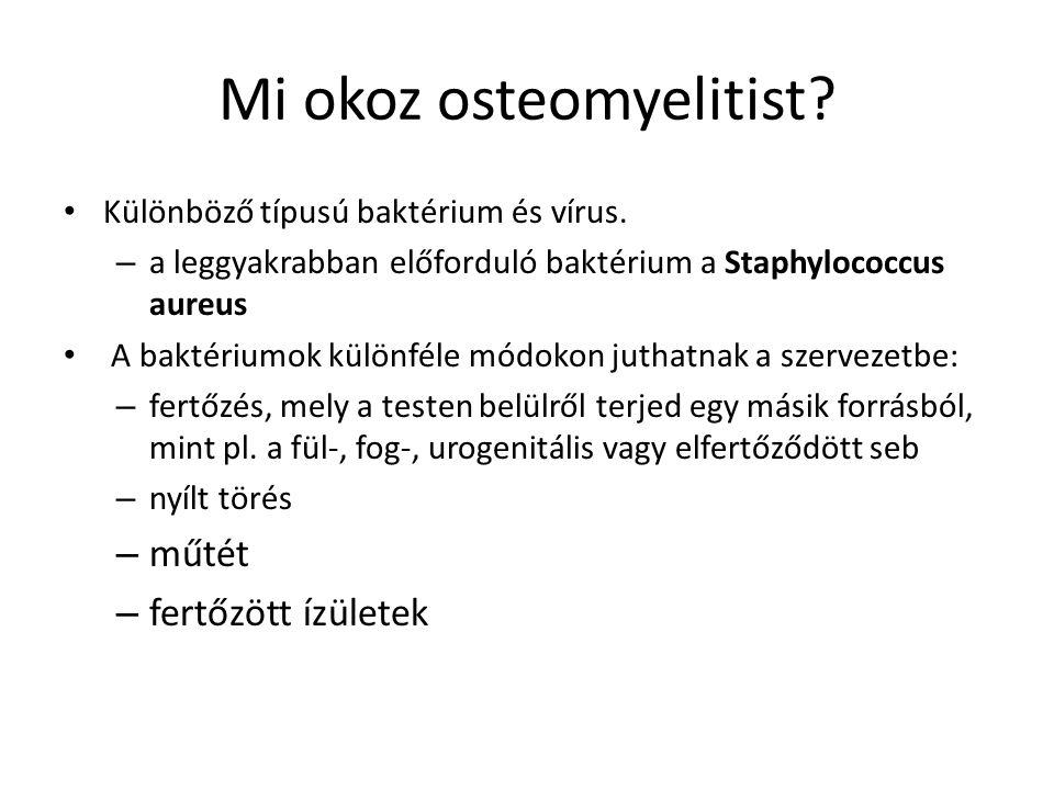 Mi okoz osteomyelitist? Különböző típusú baktérium és vírus. – a leggyakrabban előforduló baktérium a Staphylococcus aureus A baktériumok különféle mó