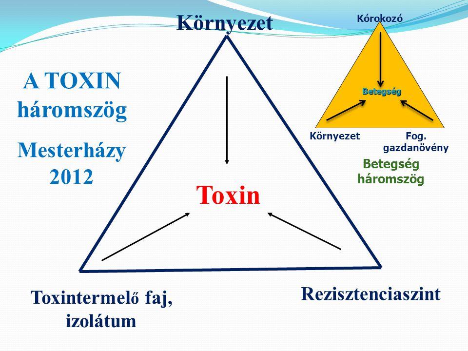 Toxin Toxintermel ő faj, izolátum Rezisztenciaszint Környezet A TOXIN háromszög Mesterházy 2012 Kórokozó Fog.