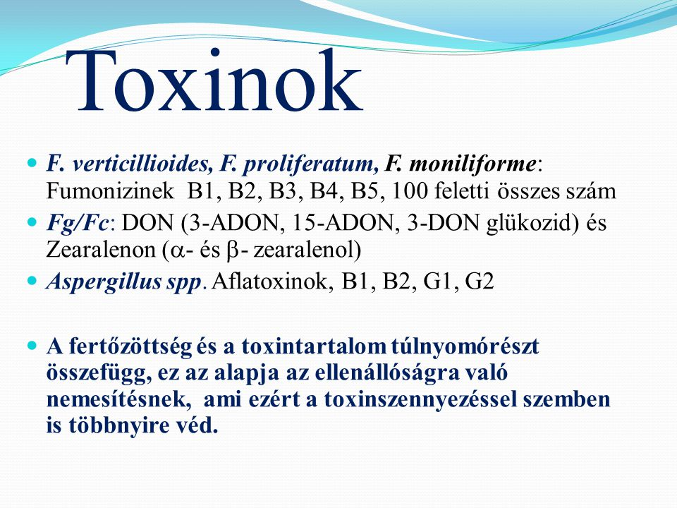 Toxinok F. verticillioides, F. proliferatum, F.