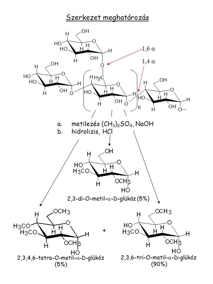 2,3-di-O-metil-  -D-glükóz (5%) 2,3,6-tri-O-metil-  -D-glükóz (90%) 2,3,4,6-tetra-O-metil-  - D-glükóz (5%) a.metilezés (CH 3 ) 2 SO 4, NaOH b.hidr
