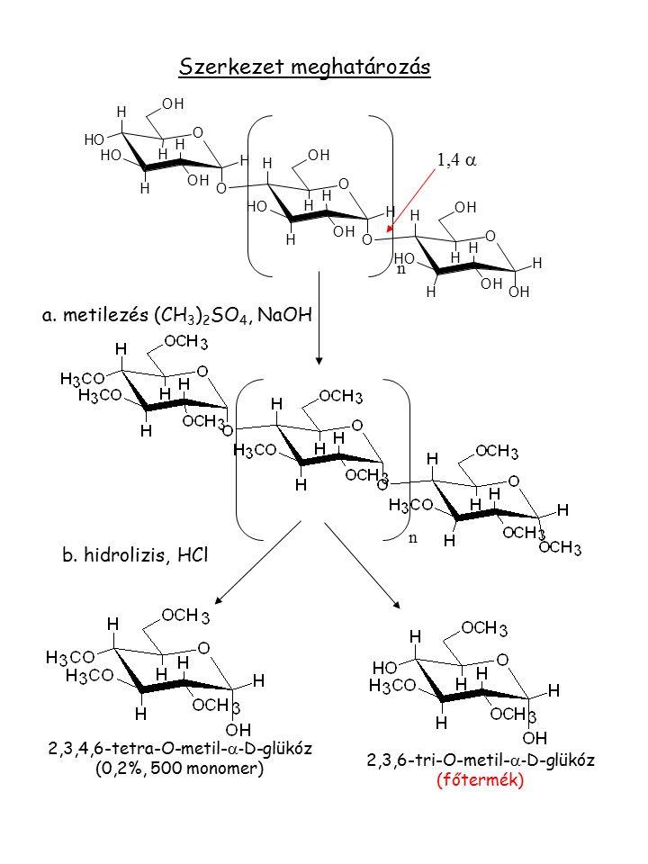 a. metilezés (CH 3 ) 2 SO 4, NaOH n 2,3,4,6-tetra-O-metil-  - D-glükóz (0,2%, 500 monomer) 2,3,6-tri-O-metil-  - D-glükóz (főtermék) b. hidrolizis,