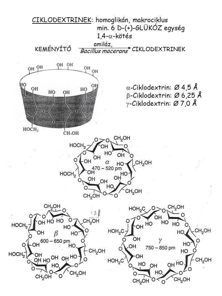 CIKLODEXTRINEK: homoglikán, makrociklus min. 6 D-(+)-GLÜKÓZ egység 1,4-  -kötés KEMÉNYÍTŐ CIKLODEXTRINEK amiláz, Bacillus macerans  - Ciklodextrin: