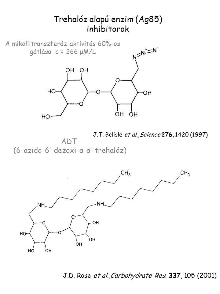 Trehalóz alapú enzim (Ag85) inhibitorok A mikoliltranszferáz aktivitás 60%-os gátlása c = 266 μM/L J.T. Belisle et al.,Science 276, 1420 (1997) J.D. R