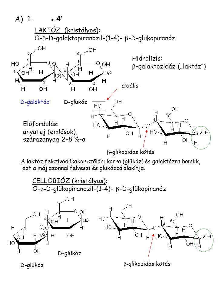 """A) 14' LAKTÓZ (kristályos): O-  -D-galaktopiranozil-(1-4)-  -D-glükopiranóz Hidrolizís:  -galaktozidáz (""""laktáz"""") 4 1  6 6 4 3 2 5 5 4 6 1  -gl"""