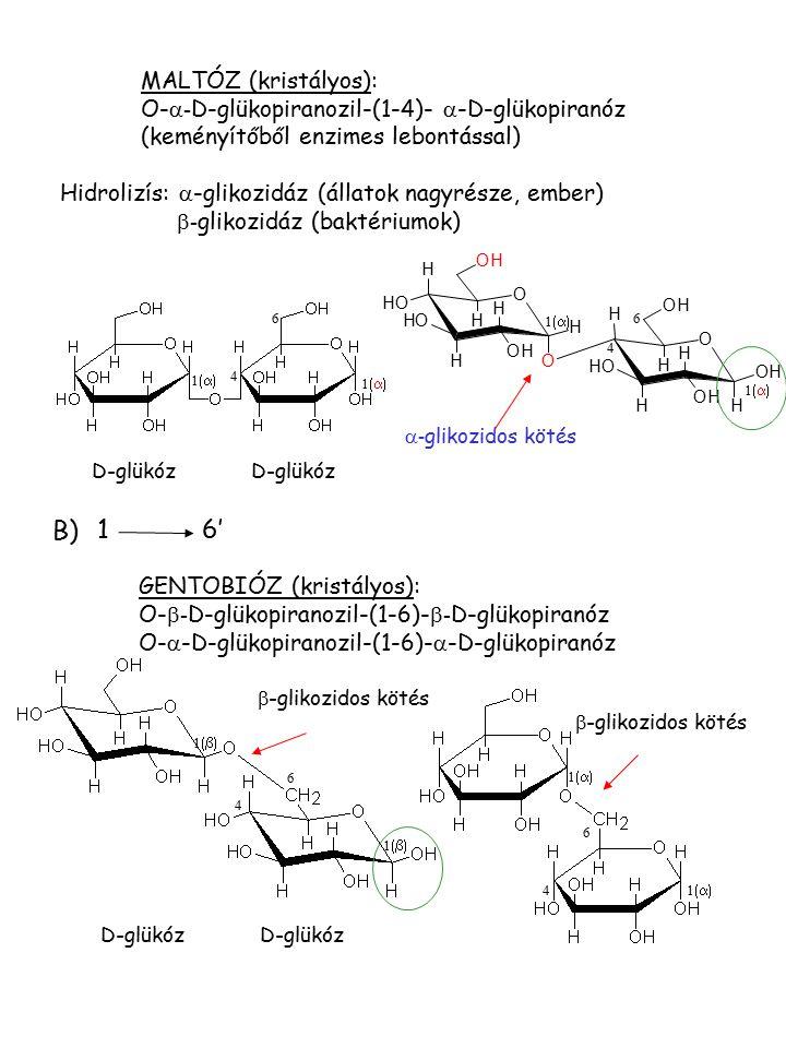 MALTÓZ (kristályos): O-  - D-glükopiranozil-(1-4)-  -D-glükopiranóz (keményítőből enzimes lebontással) 11 1  4 6 D-glükóz  - glikozidos kö