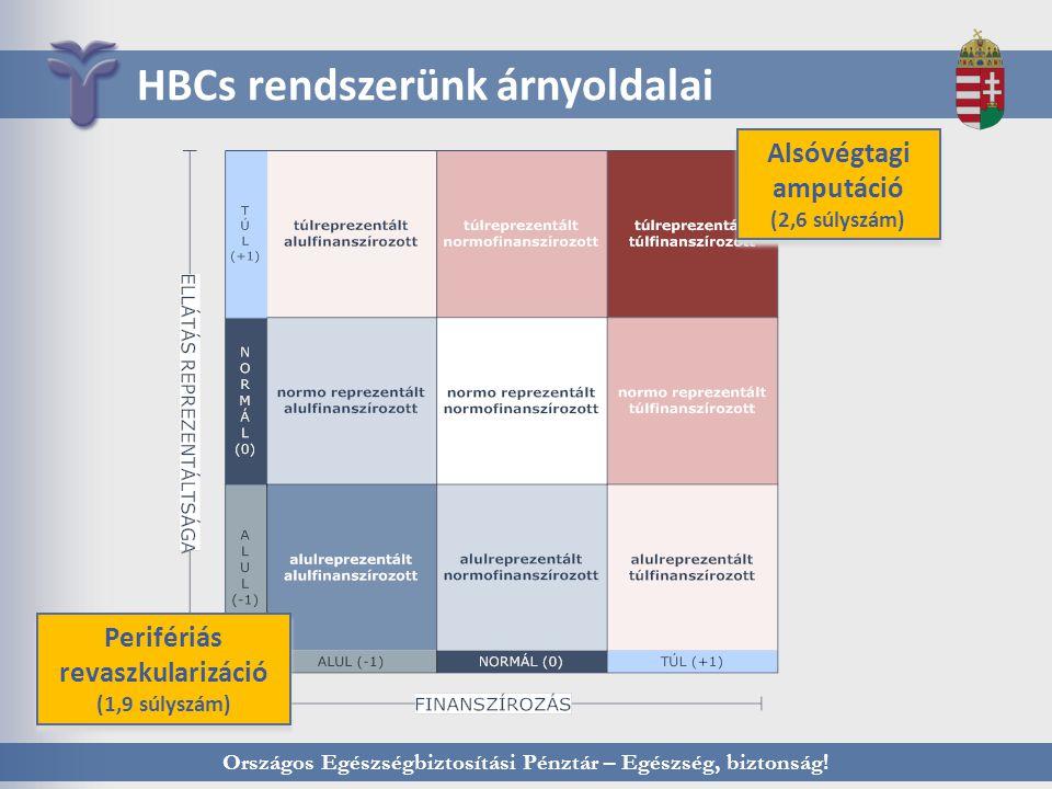 Országos Egészségbiztosítási Pénztár – Egészség, biztonság! HBCs rendszerünk árnyoldalai Alsóvégtagi amputáció (2,6 súlyszám) Alsóvégtagi amputáció (2