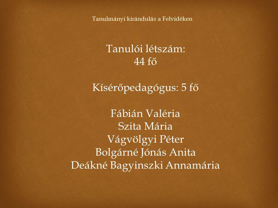 Az iskola a pályázatban az alábbi program megvalósítását vállalta:  előkészítő és értékelő foglalkozás, bemutató előadás  négynapos tanulmányi kirándulás a szlovákiai Felvidéken 1.
