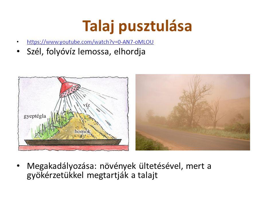 Talaj pusztulása https://www.youtube.com/watch?v=0-AN7-oMLOU Szél, folyóvíz lemossa, elhordja Megakadályozása: növények ültetésével, mert a gyökérzetü
