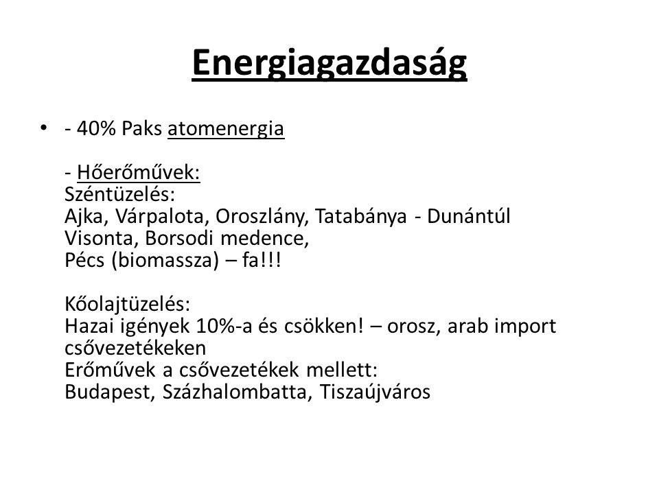 Energiagazdaság - 40% Paks atomenergia - Hőerőművek: Széntüzelés: Ajka, Várpalota, Oroszlány, Tatabánya - Dunántúl Visonta, Borsodi medence, Pécs (bio