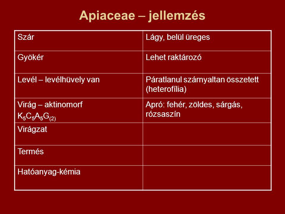 Apiaceae – jellemzés SzárLágy, belül üreges GyökérLehet raktározó Levél – levélhüvely vanPáratlanul szárnyaltan összetett (heterofília) Virág – aktinomorf K 5 C 5 A 5 G (2) Apró: fehér, zöldes, sárgás, rózsaszín Virágzat Termés Hatóanyag-kémia