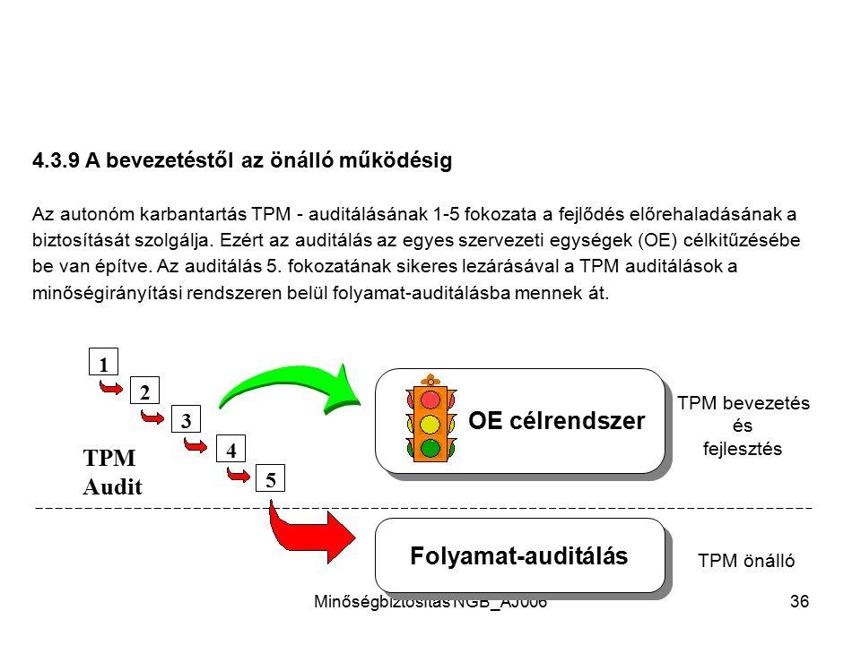 Minőségbiztosítás NGB_AJ00635 4.3.8 TPM - munkatábla TPM - munkatábla Berendezés: GAE kidolgozás Illetékességi terv TPM Info - mező Tervezett tev.sége
