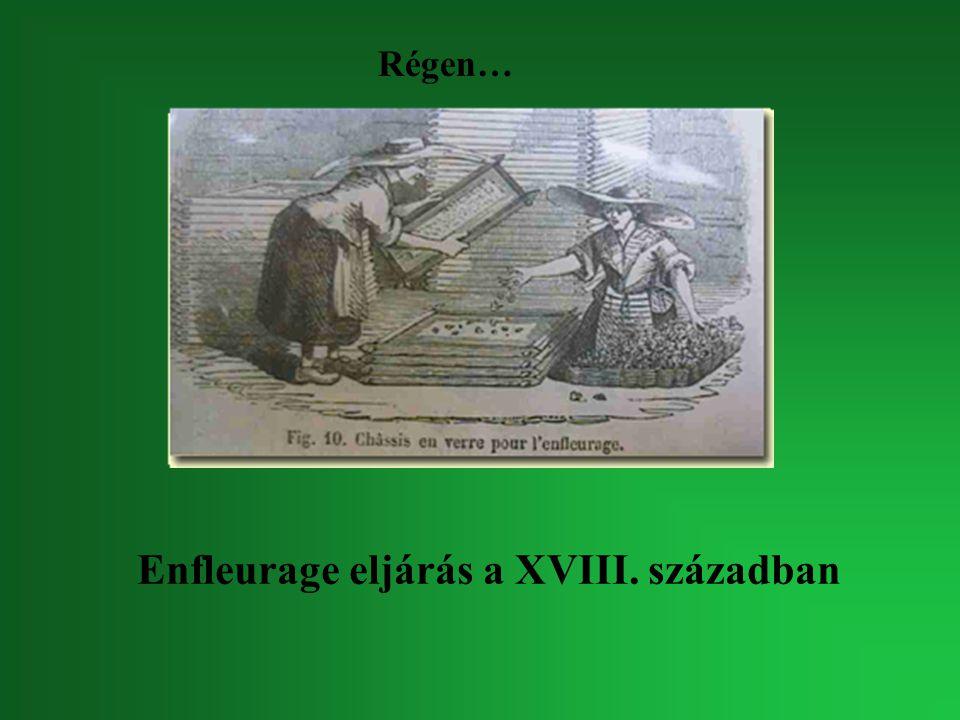Enfleurage eljárás a XVIII. században Régen…
