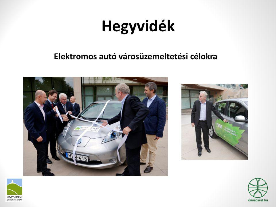 Hegyvidék Elektromos autó városüzemeltetési célokra