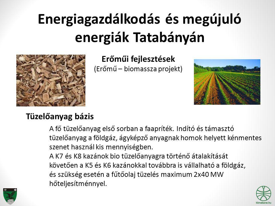 Energiagazdálkodás és megújuló energiák Tatabányán Erőműi fejlesztések (Erőmű – biomassza projekt) Tüzelőanyag bázis A fő tüzelőanyag első sorban a fa