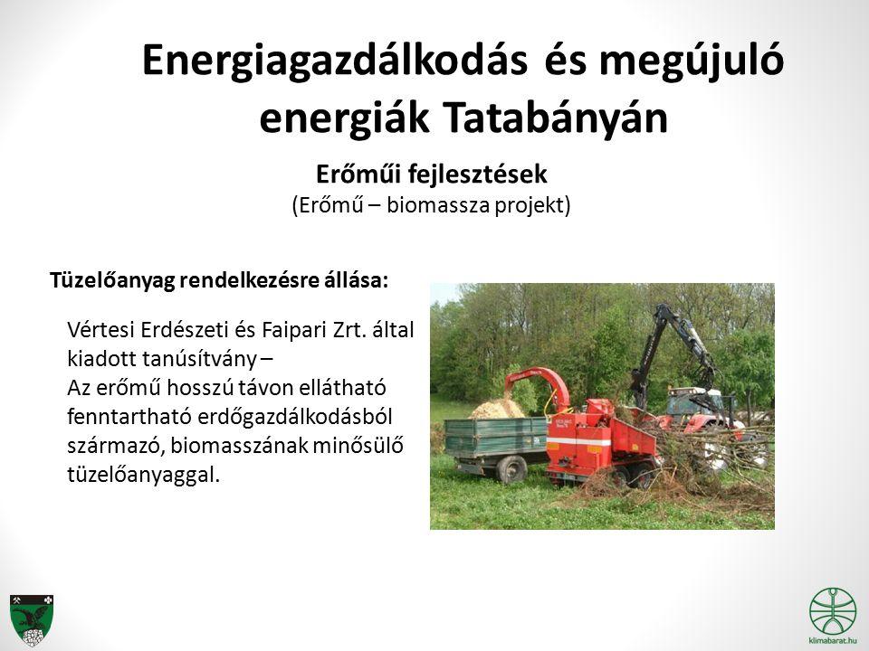 Energiagazdálkodás és megújuló energiák Tatabányán Erőműi fejlesztések (Erőmű – biomassza projekt) Tüzelőanyag rendelkezésre állása: Vértesi Erdészeti és Faipari Zrt.
