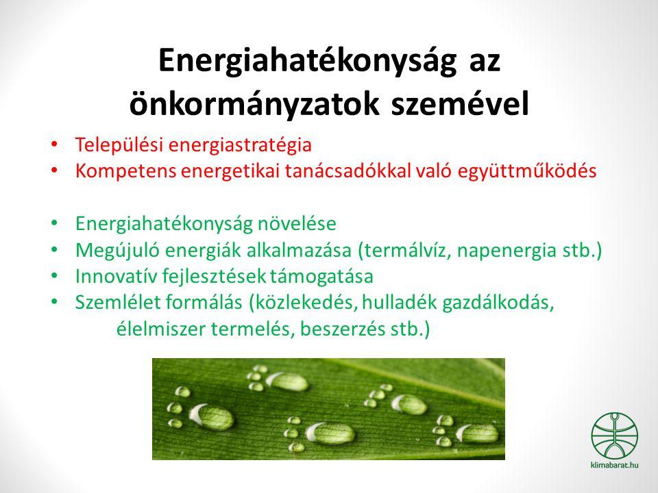 Energiahatékonyság az önkormányzatok szemével Települési energiastratégia Kompetens energetikai tanácsadókkal való együttműködés Energiahatékonyság növelése Megújuló energiák alkalmazása (termálvíz, napenergia stb.) Innovatív fejlesztések támogatása Szemlélet formálás (közlekedés, hulladék gazdálkodás, élelmiszer termelés, beszerzés stb.)