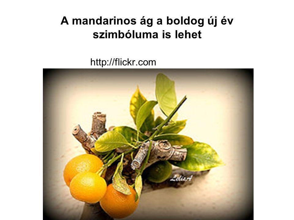 A mandarinos ág a boldog új év szimbóluma is lehet http://flickr.com