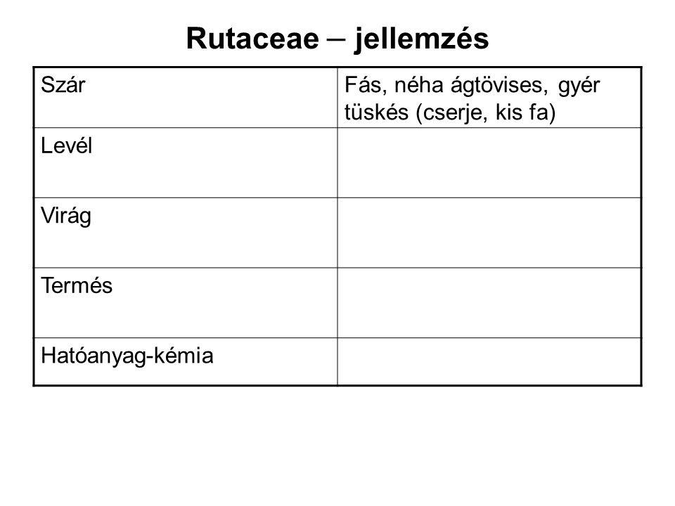 Rutaceae – jellemzés SzárFás, néha ágtövises, gyér tüskés (cserje, kis fa) Levél Virág Termés Hatóanyag-kémia