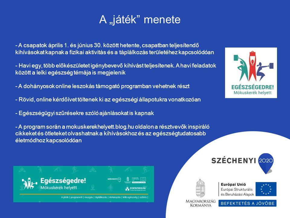 Szakmai felkészítő tréning Egészségfejlesztő Kórházak projektben résztvevő kórházak helyi egészségtervének kialakítása, megvalósítása Kommunikációs és Burn out tréningek Egészségtudatosságot elősegítő, életmódváltást elősegítő programok Egészségfejlesztő Kórházak Hálózat megismertetése és a hálózaton belüli kommunikáció elősegítése További tevékenységek az alprojektben