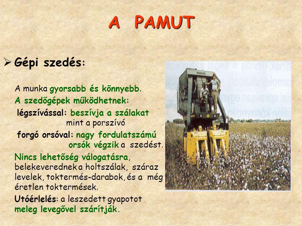 A PAMUT  Gépi szedés : A munka gyorsabb és könnyebb. A szedőgépek működhetnek: légszívással: beszívja a szálakat mint a porszívó forgó orsóval: nagy