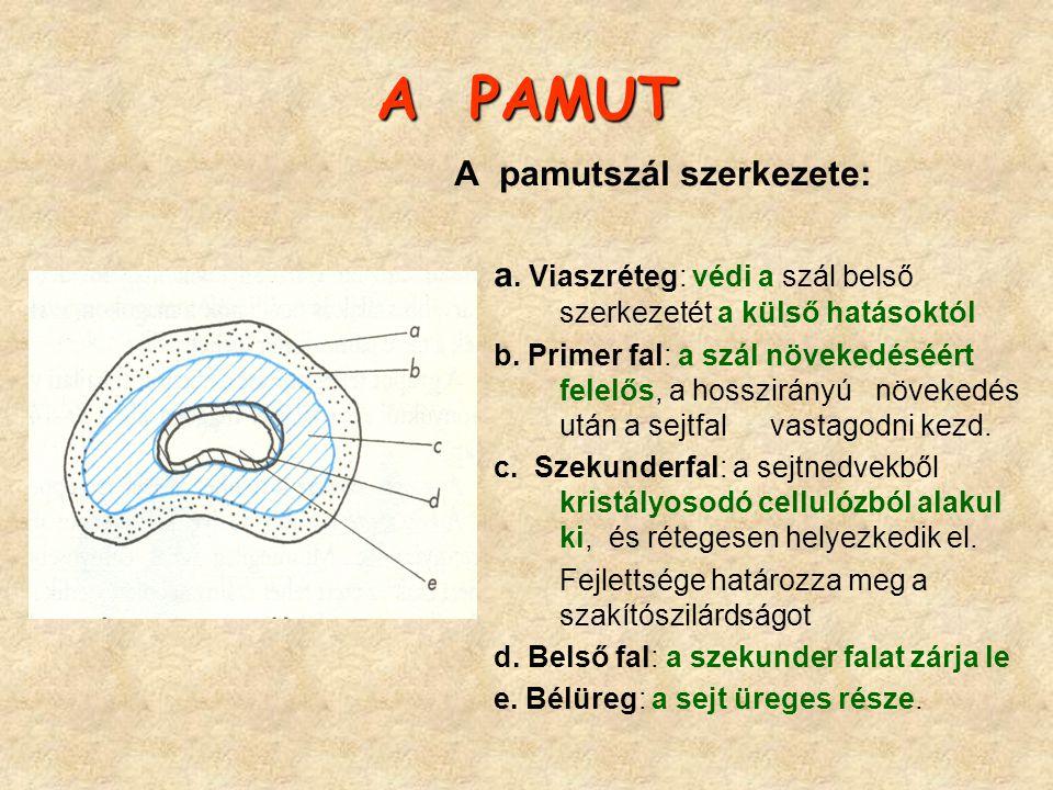 A PAMUT A pamutszál szerkezete: a. Viaszréteg: védi a szál belső szerkezetét a külső hatásoktól b. Primer fal: a szál növekedéséért felelős, a hosszir