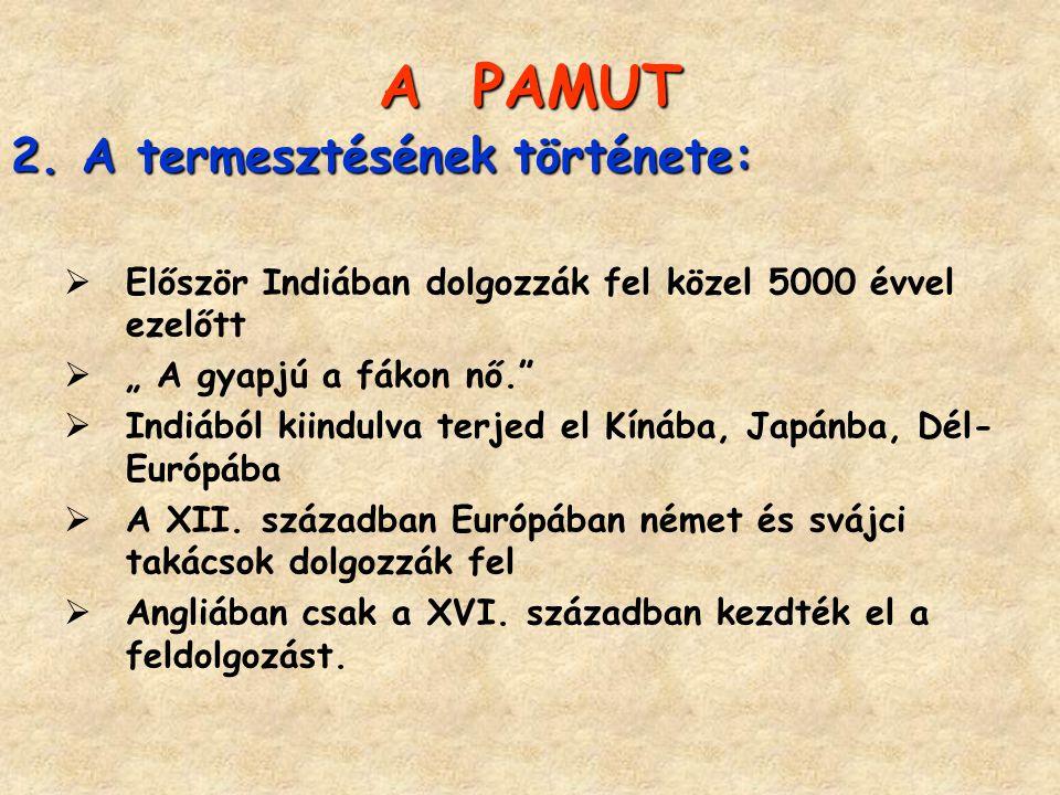 """APAMUT A PAMUT 2.A termesztésének története:  Először Indiában dolgozzák fel közel 5000 évvel ezelőtt  """" A gyapjú a fákon nő.""""  Indiából kiindulva"""