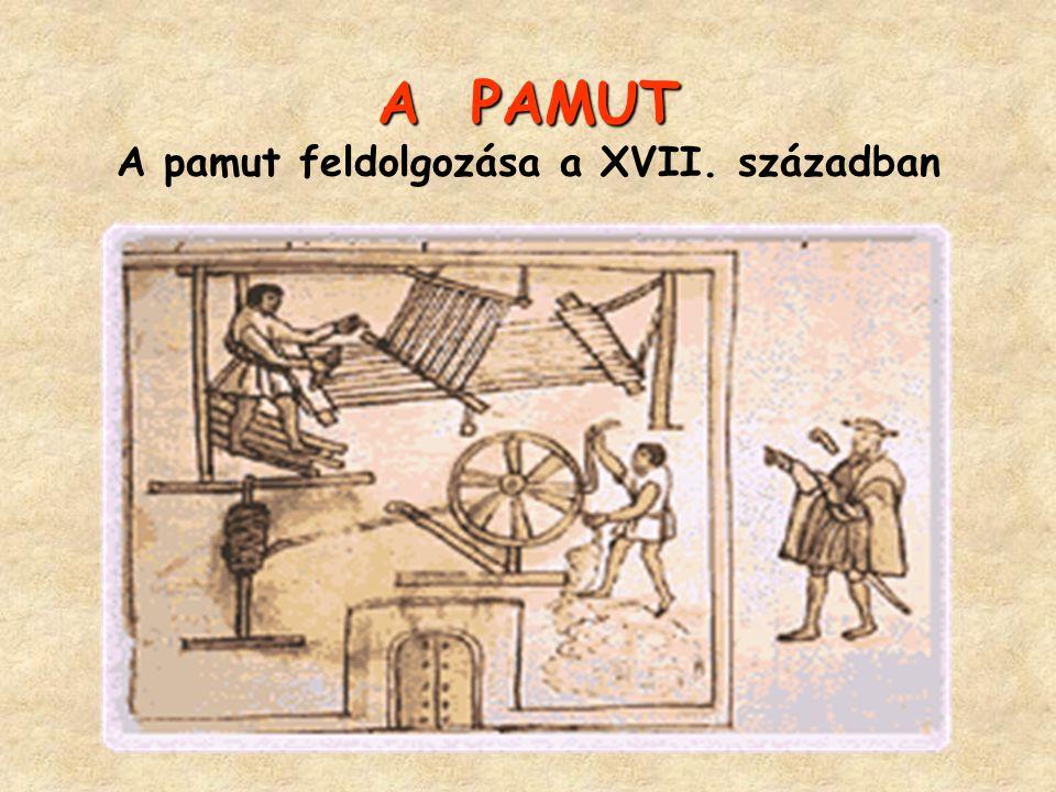 A PAMUT A PAMUT A pamut feldolgozása a XVII. században