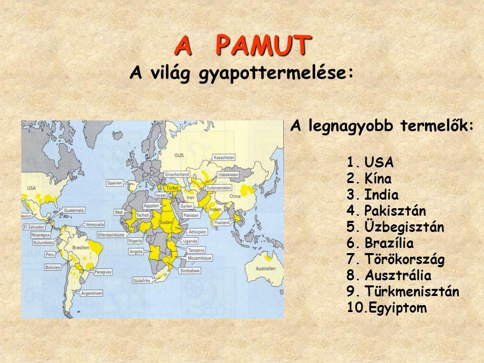 A PAMUT A PAMUT A világ gyapottermelése: A legnagyobb termelők: 1.USA 2.Kína 3.India 4.Pakisztán 5.Üzbegisztán 6.Brazília 7.Törökország 8.Ausztrália 9