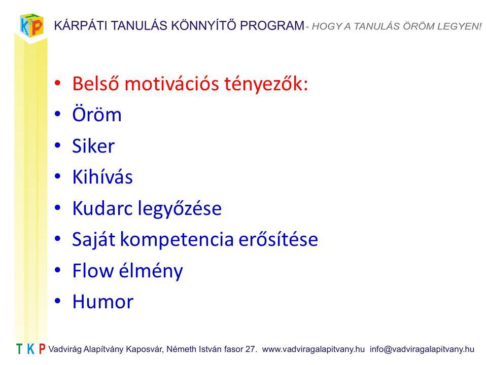 Belső motivációs tényezők: Öröm Siker Kihívás Kudarc legyőzése Saját kompetencia erősítése Flow élmény Humor