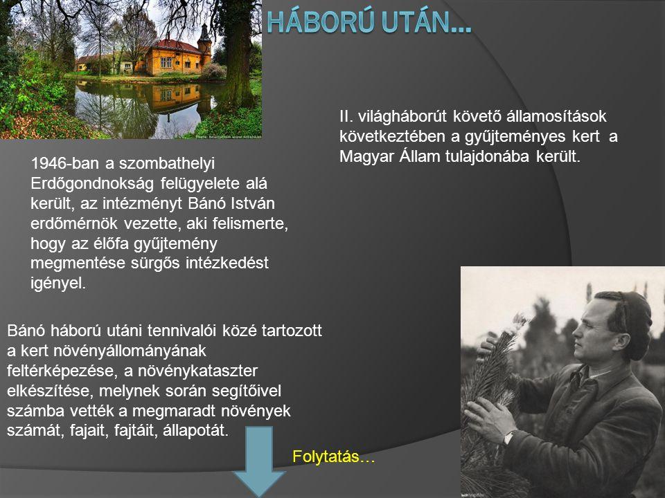 Bánó háború utáni tennivalói közé tartozott a kert növényállományának feltérképezése, a növénykataszter elkészítése, melynek során segítőivel számba v