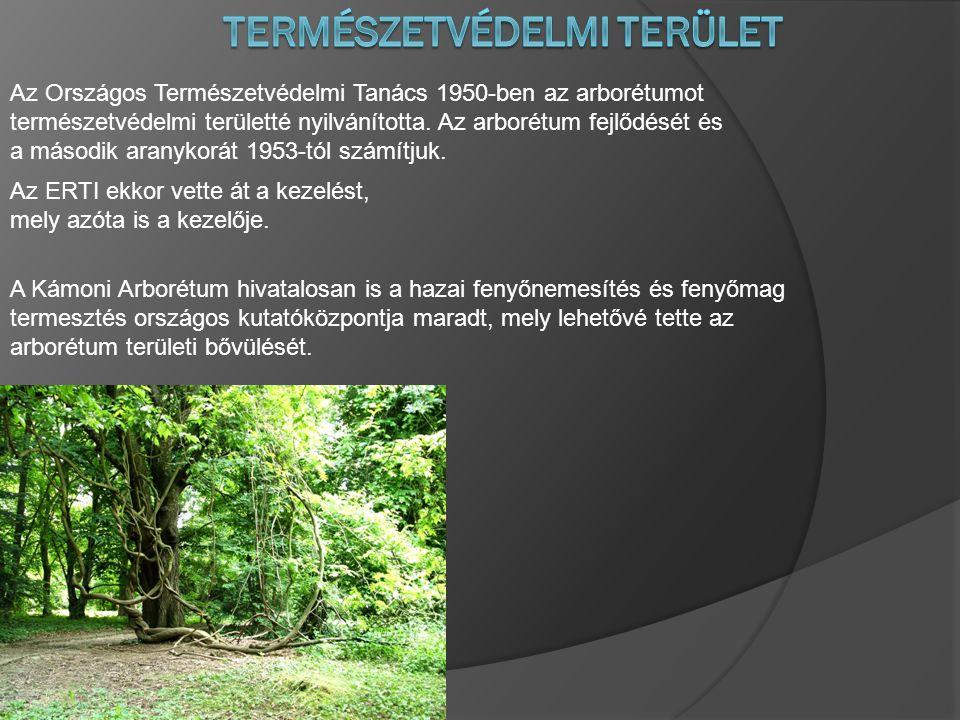 Az Országos Természetvédelmi Tanács 1950-ben az arborétumot természetvédelmi területté nyilvánította.