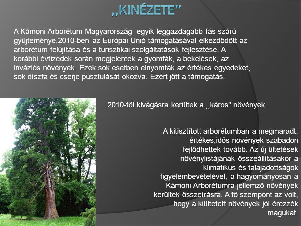 A Kámoni Arborétum Magyarország egyik leggazdagabb fás szárú gyűjteménye.2010-ben az Európai Unió támogatásával elkezdődött az arborétum felújítása és a turisztikai szolgáltatások fejlesztése.