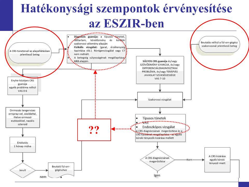 Az ESZIR közösségi szintű adaptációja – egészségszervezési protokollok Legfontosabb lépések:  Országos kompetencialista  Helyi kapacitás-kompetenciatérkép  Választási pontok azonosítása (országos és helyi)  Első betegút draft (közösségi szinten nevesíthető szolgáltatók konkretizálása)  Összevetés a jelenlegi ellátási gyakorlattal: második betegút draft, változtatási terv  Protokoll véglegezése (alapellátási szolgáltatók nevesítése, visszamutatás a többi eüi szolgáltatónak is)  Hosszútávú fejlesztési terv kialakítása Kulcsszereplő: közösségi egészségszervező Tapasztalatok alapján illesztés a jogszabályi keretrendszerbe