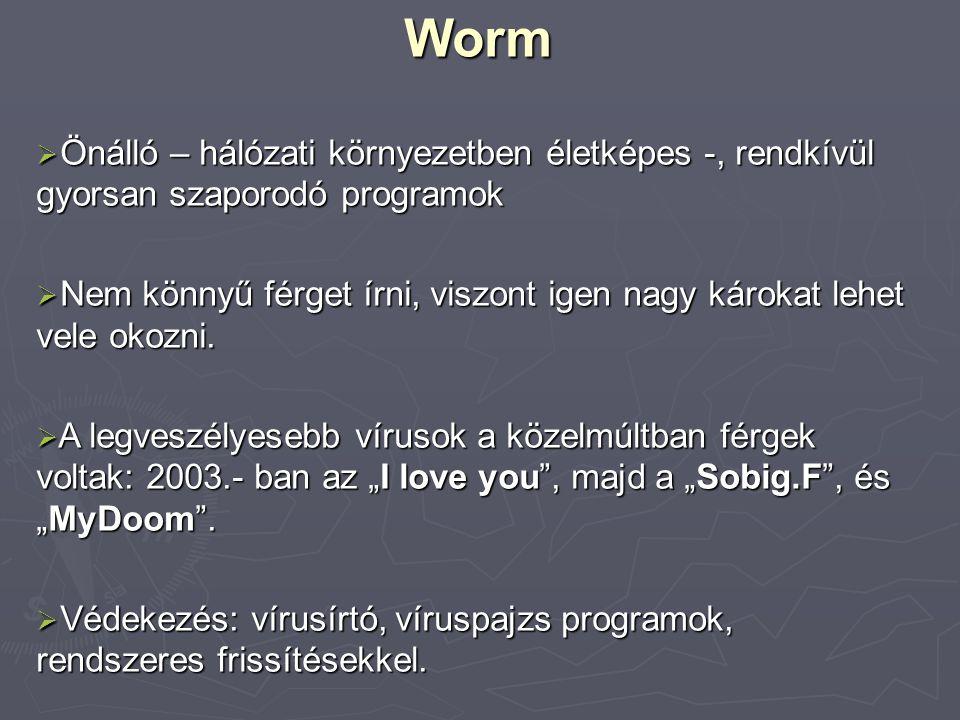 Worm  Önálló – hálózati környezetben életképes -, rendkívül gyorsan szaporodó programok  Nem könnyű férget írni, viszont igen nagy károkat lehet vel