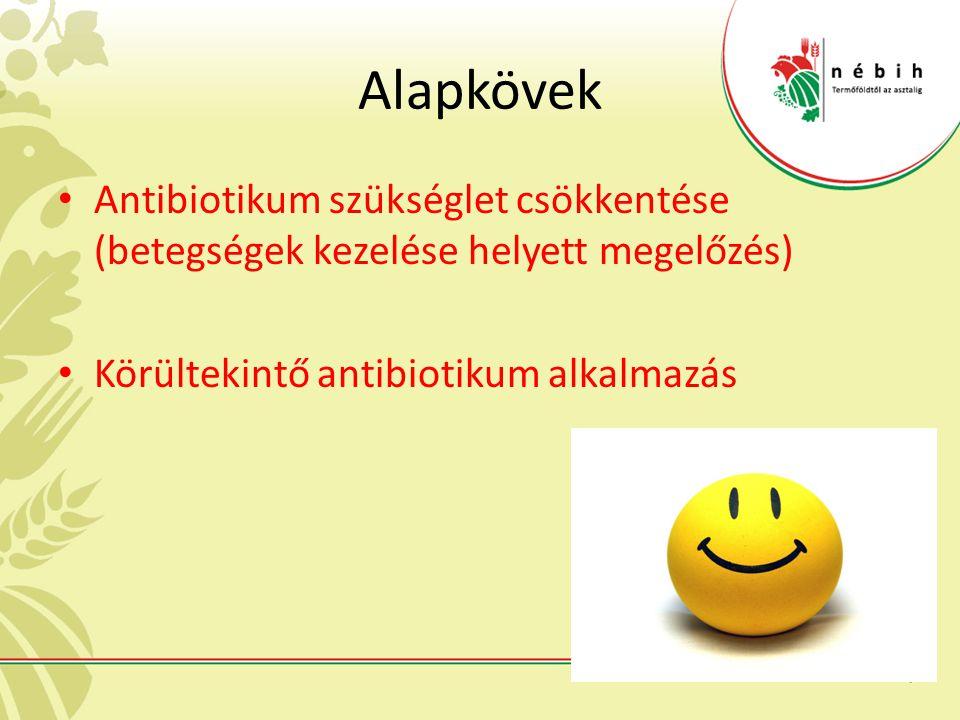 Alapkövek Antibiotikum szükséglet csökkentése (betegségek kezelése helyett megelőzés) Körültekintő antibiotikum alkalmazás