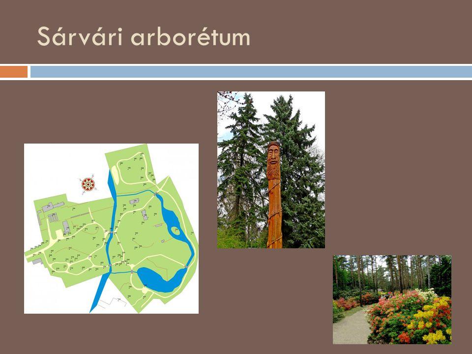 Sárvári arborétum Travels: Magyarország, Szombathely, Kámoni arborétum, SzG3 szalay3-travels.blogspot.com400 × 300Keresés kép alapján a bejárat, Ökotu