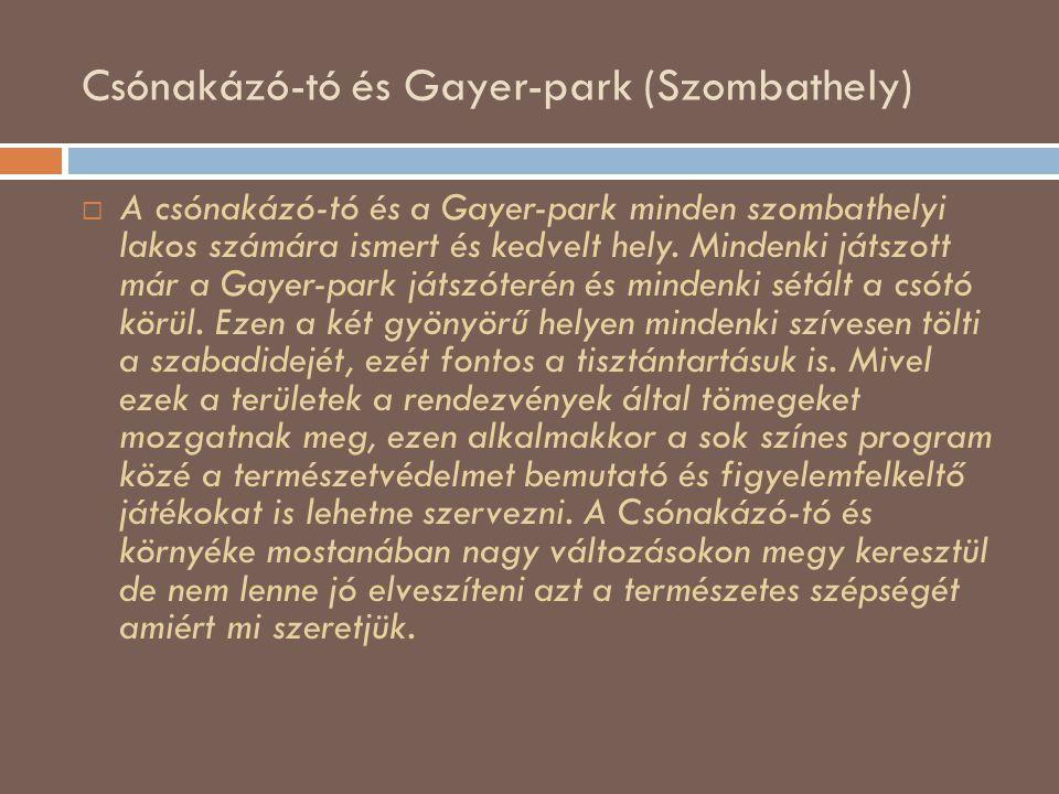 Csónakázó-tó és Gayer-park (Szombathely)  A csónakázó-tó és a Gayer-park minden szombathelyi lakos számára ismert és kedvelt hely. Mindenki játszott