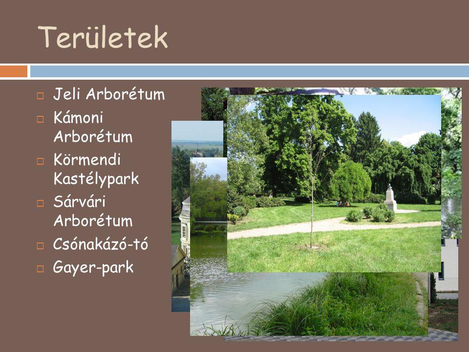 Területek  Jeli Arborétum  Kámoni Arborétum  Körmendi Kastélypark  Sárvári Arborétum  Csónakázó-tó  Gayer-park