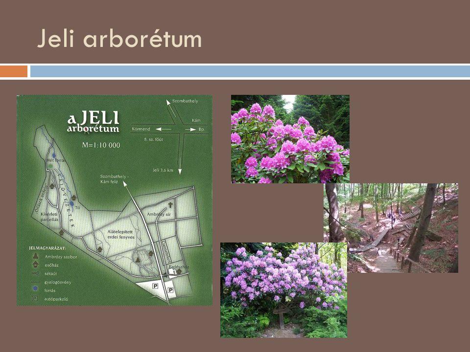 Kámoni arborétum  Egykoron Kámon önálló falu volt, azonban jelenleg már Szombathely északi részéhez tartozik.