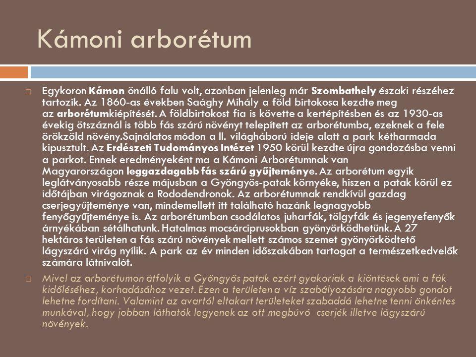 Kámoni arborétum  Egykoron Kámon önálló falu volt, azonban jelenleg már Szombathely északi részéhez tartozik. Az 1860-as években Saághy Mihály a föld