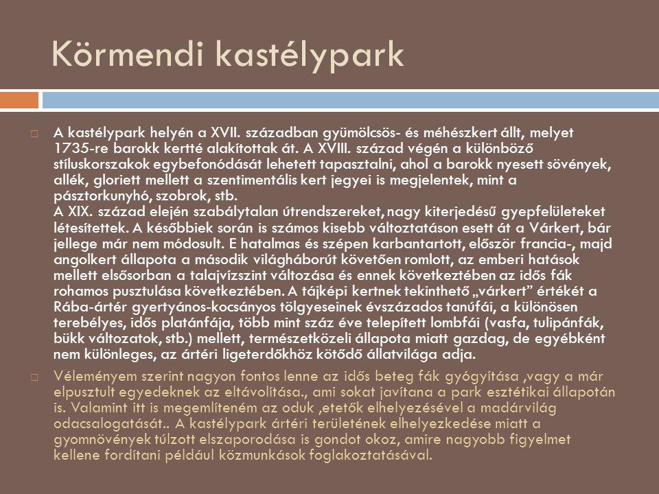 Körmendi kastélypark  A kastélypark helyén a XVII. században gyümölcsös- és méhészkert állt, melyet 1735-re barokk kertté alakítottak át. A XVIII. sz