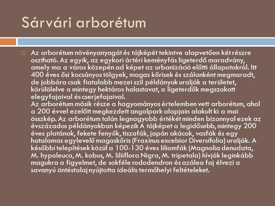 Sárvári arborétum  Az arborétum növényanyagát és tájképét tekintve alapvetően két részre osztható. Az egyik, az egykori ártéri keményfás ligeterdő ma